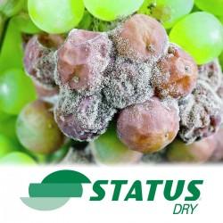Status Dry (20KG)